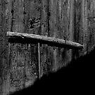 Assignan Door 2 by ragman
