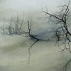 Branches Trapped In The Ice by DMHImages