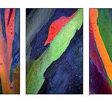 Eucalyptus Triptych by Haydee  Yordan