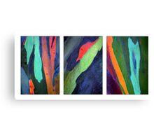 Eucalyptus Triptych Canvas Print