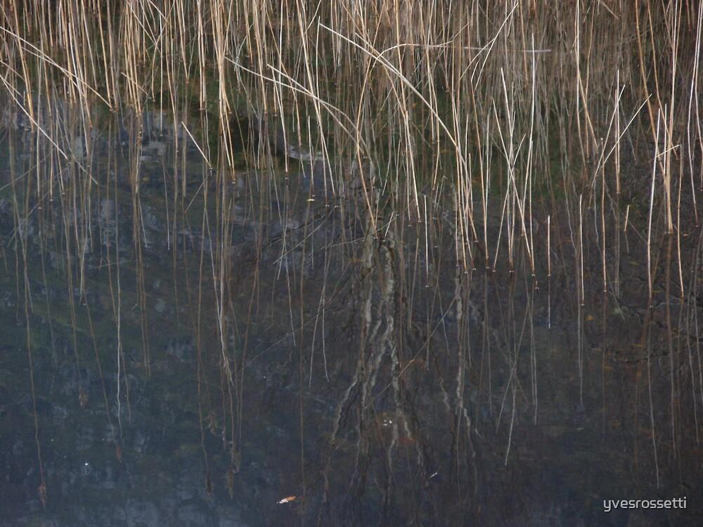 vertical waterlines by yvesrossetti