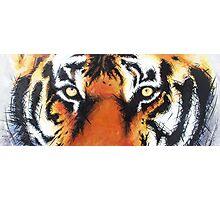 Tiger's Eyes Photographic Print