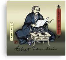 Samurai Albert Einstein Canvas Print