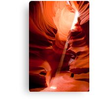 antelope sunbeam Canvas Print