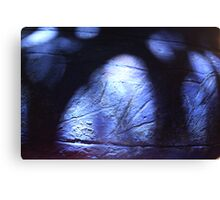 Light and colour 6 Canvas Print