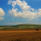 Fields Of Gold by Durotriges