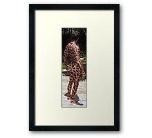 Argus Panoptes Framed Print