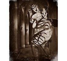 The Haunted 2 ( The Breeder) Photographic Print