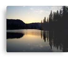 Metolius Arm Metal Print