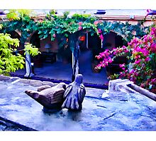 Clay Birds Above Courtyard Photographic Print
