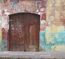 Old Door by Christine Wilson
