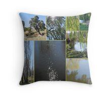Coolaburragundy Creek Coolah NSW Throw Pillow