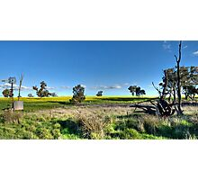 Rural Pano Photographic Print