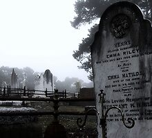 Misted Headstone by Paula McManus