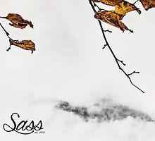 Autumn by NeoHarris