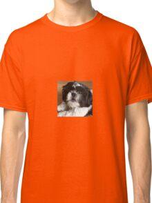 Shih tzu puppy Classic T-Shirt