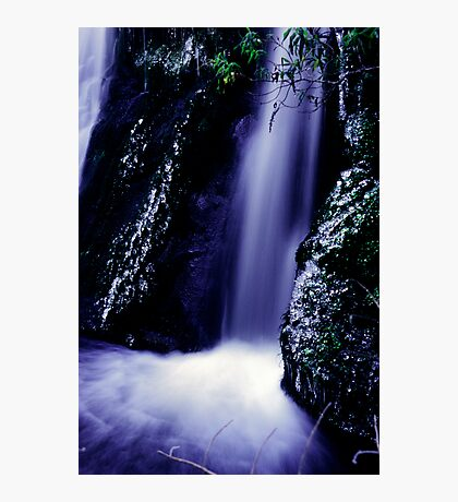 small waterfall on the Milford road Photographic Print