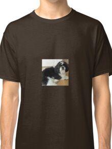 Shih tzu lie down puppy Classic T-Shirt