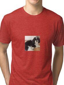 Shih tzu lie down puppy Tri-blend T-Shirt