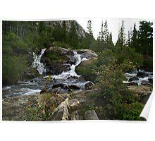 Alpine Stream on Hoosier Pass, Colorado Poster