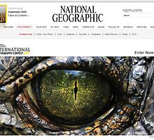 National Geographic  - Contest Banner by Dennis Stewart
