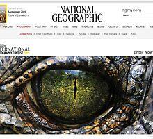 National Geographic  - Contest Banner by Dennis Stewart