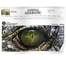 National Geographic  - Contest Banner Poster