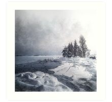 Winter & Ice Art Print