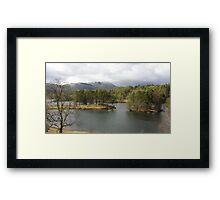 Tarn Hows Tree Scene Framed Print