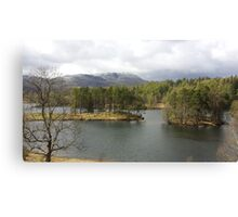 Tarn Hows Tree Scene Canvas Print