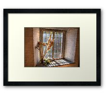 Old Goulburn Brewery Window Framed Print