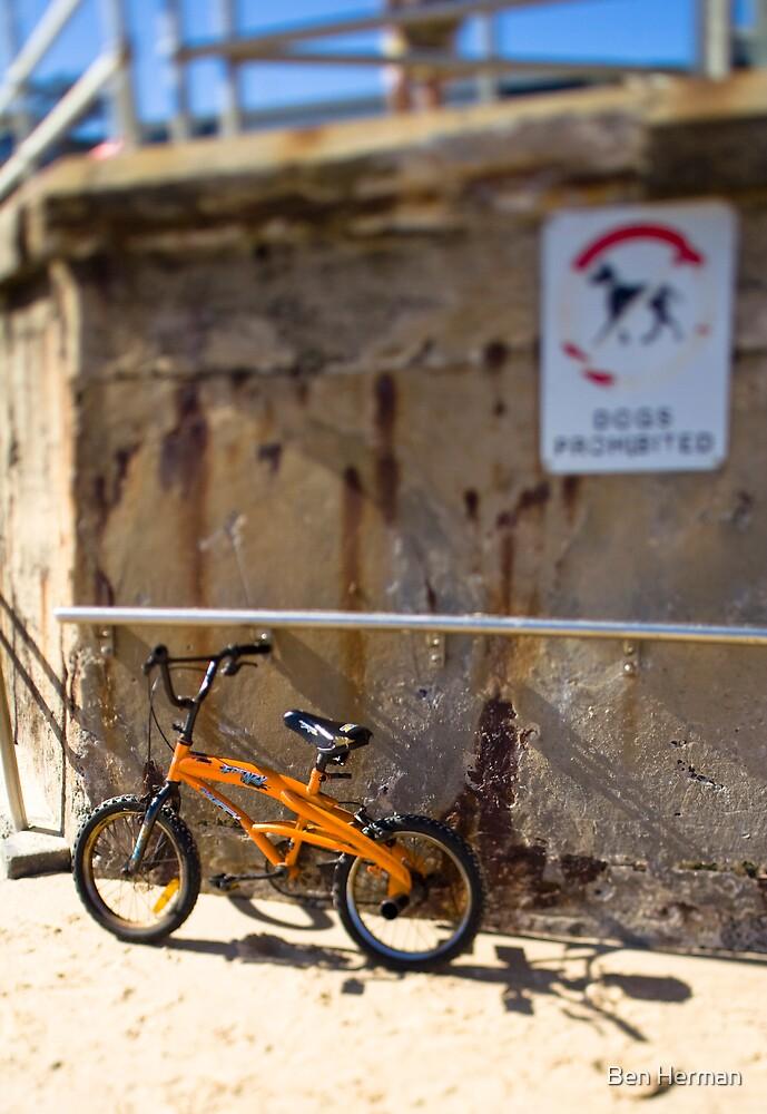 Toy Bike by Ben Herman