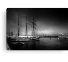 Deep Winter Canvas Print