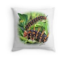 BLUE MOON BUTTERFLY CATERPILLAR Throw Pillow