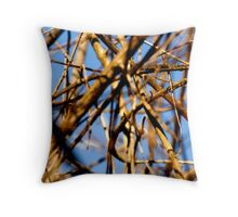 Cross-Hatch Throw Pillow