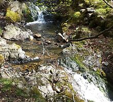 Waterfall Tarn Hows by loubylou2209