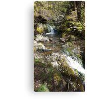 Waterfall Tarn Hows Canvas Print