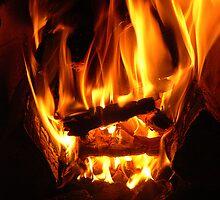 A Winter Fire by Jo Ross