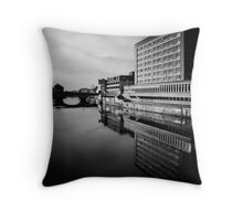 You pay for the view Throw Pillow