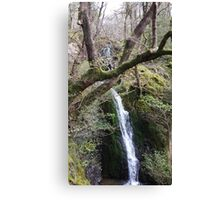 Waterfall Scene Slide Canvas Print