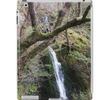Waterfall Scene Slide iPad Case/Skin