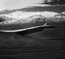 black sand sky by dennis william gaylor