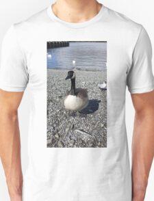 Windermere Canadian Goose T-Shirt