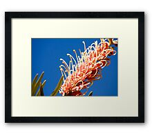 Floral Perfection Framed Print