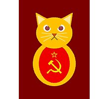 Commie cat Photographic Print