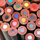 colored pencils by Lynne Prestebak