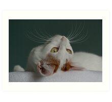 Lotus's Whiskers Art Print