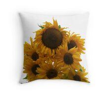 A Sunny Family Throw Pillow