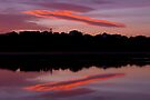 UFO over Lake Tyers by Travis Easton
