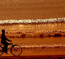 morning duty on sea shore  bicycle by jayantilalparma